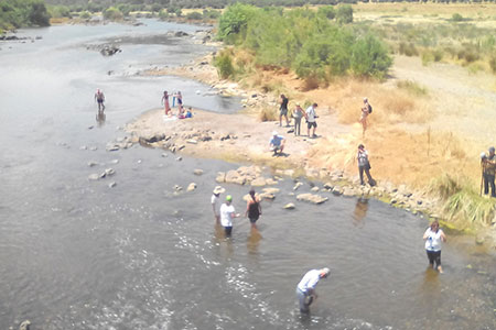 Foto 5 - Guadiana: observação da qualidade da água